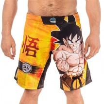 Fight Shorts - bardzo wytrzymałe, wygodne spodenki do sportów walki